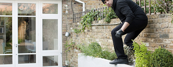 Protecting Your Backyard from Burglars